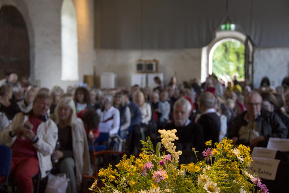 Publik inför Lars Lerin på Bokdagar 2015
